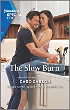 The Slow Burn (Masterson, Texas Book 2)