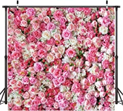 Best pink roses backdrop Reviews