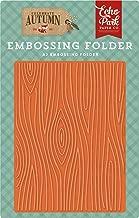Echo Park Paper Company CAU158032 Wood Grain Embossing Folder, Orange, Yellow, Blue, Brown, Tan