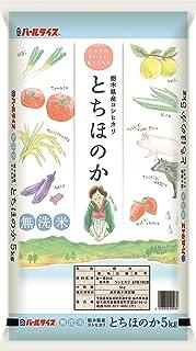 【精米】 栃木県産コシヒカリ 無洗米 とちほのか 5kg 令和2年産