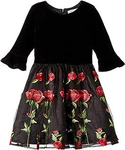 3/4 Bell Sleeve Velvet Bodice Dress with Embroidered Skirt (Toddler/Little Kids)