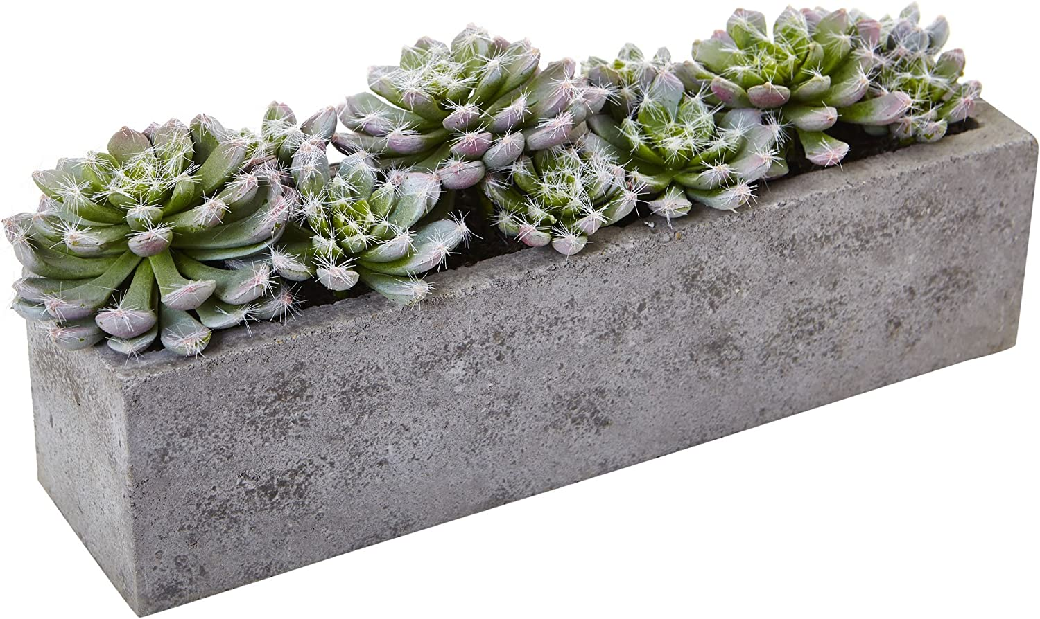 Nearly Natural Succulent Garden with Textured Concrete Planter