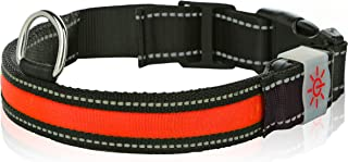 Moco Best Light Up Rechargeable LED Nylon Dog Collar with 3 Light Settings and Strong Buckle - Includes USB Charger - Keep Pet Safe and Visible