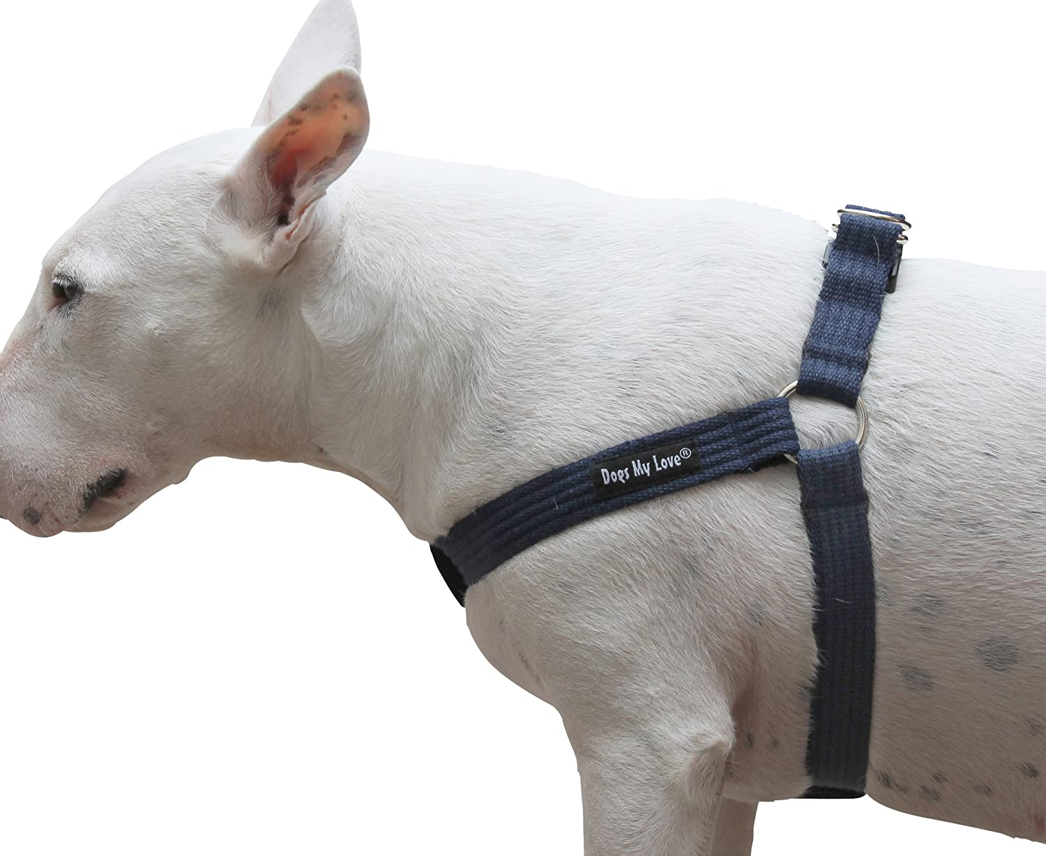 Cotton Web Adjustable Dog Stepin Harness 4 Sizes bluee (Large  17 23  Chest; 1  Wide)