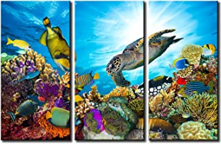 Best colorful sea turtle paintings Reviews