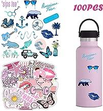 100 PCS VSCO Waterproof Stickers for Hydroflasks, Laptop, Phone, Luggage, Skateboard, Guitar,Water Bottles,Cute Trendy Aesthetic Stickers for Girls, Kids, Teens,Women