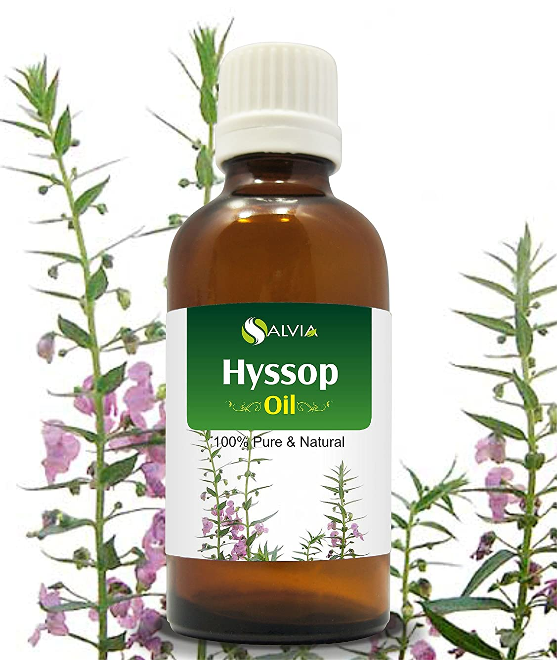 店員独立して独裁者HYSSOP OIL 100% NATURAL PURE UNDILUTED UNCUT ESSENTIAL OILS 15ML