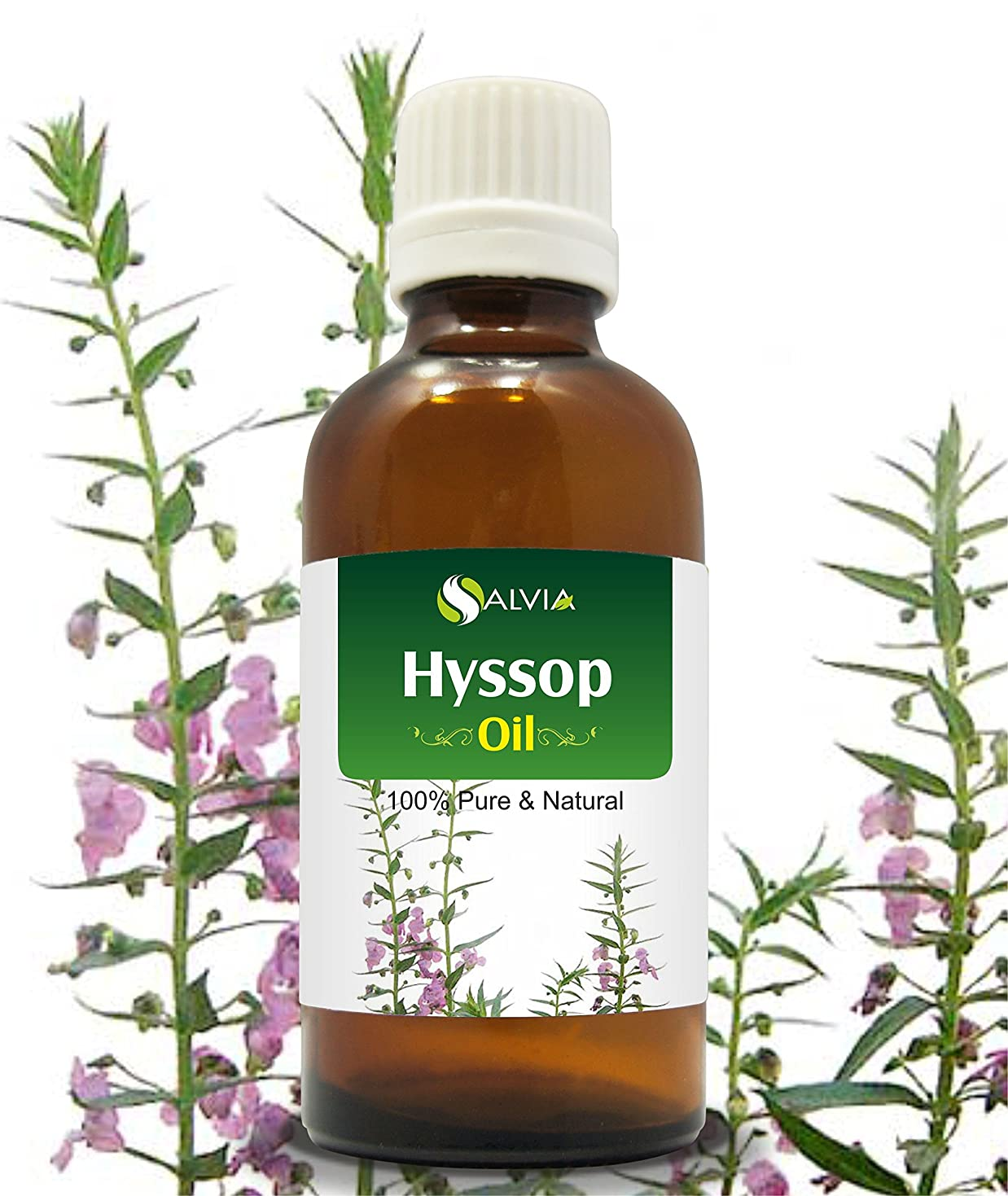 マサッチョ師匠損傷HYSSOP OIL 100% NATURAL PURE UNDILUTED UNCUT ESSENTIAL OILS 50ML