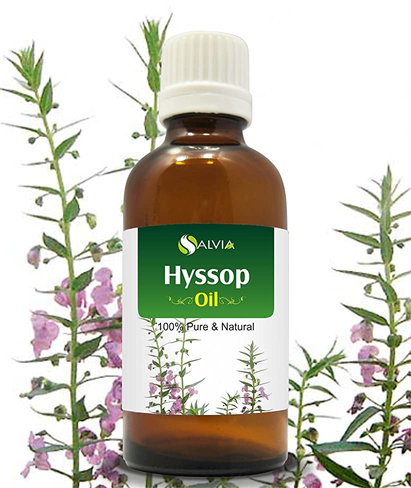 もし暗黙ステープルHYSSOP OIL 100% NATURAL PURE UNDILUTED UNCUT ESSENTIAL OILS 50ML