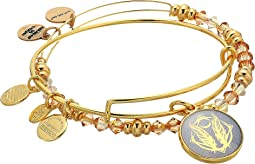 Alex and Ani - Art Infusion Bracelet Set, Godspeed