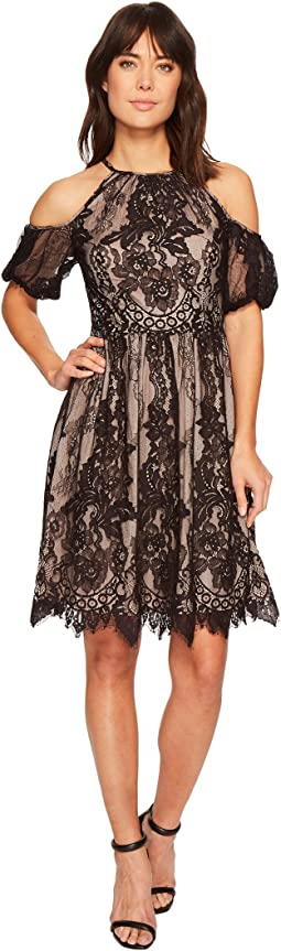 Maggy London - Chantilly Lace Placed Cold Shoulder Fit and Flare