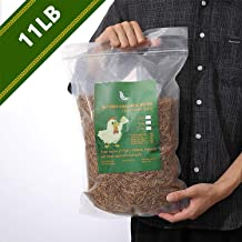 WAMSOFT Non-GMO Dried Mealworms - Treats for Birds Chickens Hedgehog Hamster Fish Reptile Turtles … (11LB)
