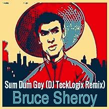 Sum Dum Goy (DJ TeckLogix Remix)