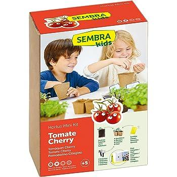 SEMBRA - juego educativo, Kit huerto Tomate Cherry: Amazon.es: Jardín
