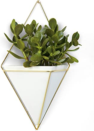 Umbra Trigg Hanging Planter Vase & Geometric Wall Decor Container, White/Brass