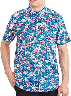 Best pink flamingo shirts Reviews