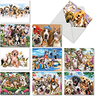 10 Pet Note Cards with Envelopes 4 x 5.12 inch, Boxed Set of 'Off the Leash' Stationery Featuring Funny Dogs, Cats, Bunny - Blank Greeting Cards for Thank Yous, Birthdays, Holidays M6641OCB