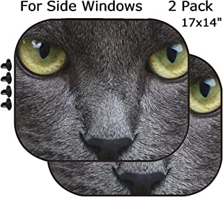 MSD Car Sun Shade - Side Window Sunshade Universal Fit 2 Pack - Block Sun Glare, UV and Heat for Baby and Pet - Image 23143753 Close up Portrait of a Grey Kitten