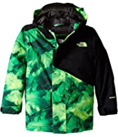 The North Face Kids - Calisto Insulated Jacket (Little Kids/Big Kids)