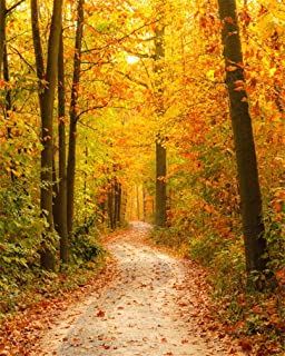 AOFOTO 8x10ft Fall Forest Path Photography Studio Backdrop Autumn Park Scenic Background Woods Fallen Leaves Adult Kid Girl Boy Lovers Man Artistic Portrait Outdoor Travel Photoshoot Props Video Drape