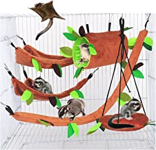 Pocket Pets Rat Cag Set Flying Squirrel Ready to Ship Sugar Glider Cage Set Sugar Bear Rat Sugar Glider Accessories Cage set SK 156