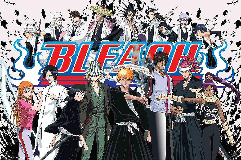 Bleach  Cast Art Print Poster