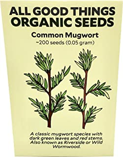 Common Mugwort (Artemisia vulgaris) Seeds (~200): Certified Organic, Non-GMO, Heirloom, Open Pollinated Seeds from The United States