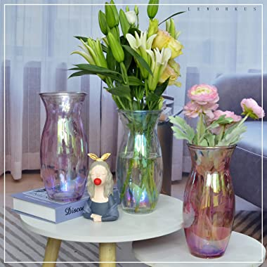 """LEWORKUS Glass Vase for Flowers, 9.5"""" Tall Large Glass Vase for Decor, Round Irised Clear Thickened Glass Vase for Flower"""