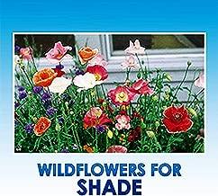 Partial Shade Wildflower Seeds Bulk - 8 Bonus Gardening eBooks + Open-Pollinated Wildflower Seed Mix Packet, Non-GMO, No Fillers, Annual, Perennial Wildflower Seeds Year Round Planting - 1 oz