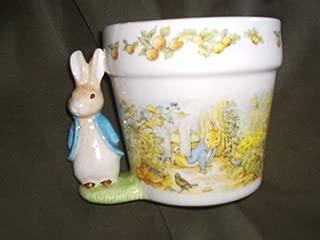 peter rabbit planter
