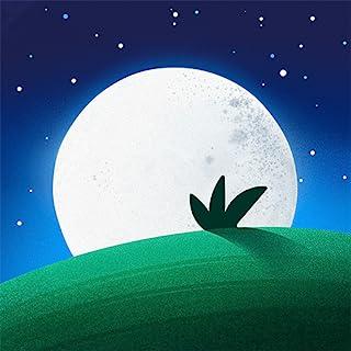 Sleep App Sounds
