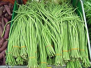 VISTARIC Yardlong Bean (Asparagus Bean, Snake Bean, Chinese Long Bean) 100 Seeds
