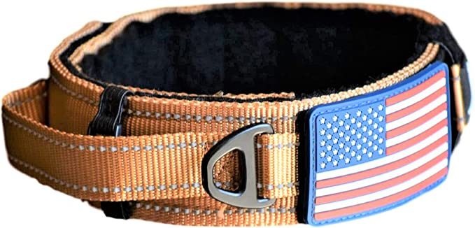 """Dog Collar with Control Handle Quick Release Metal Buckle Heavy Duty Military Style 2"""" Width Nylon with USA Flag for Handling and Training Large Canine Male Or Female K9 (TAN)"""