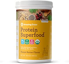 product image for Amazing Grass Protein Superfood: Organic Vegan Protein Powder, Plant Based Meal Replacement Shake with 2 servings of Fruits and Veggies, Peanut Butter Flavor, 10 Servings, 15.5 Ounce (Pack of 1)