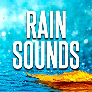 Best free rain and thunderstorm sounds Reviews