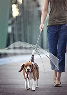 CLM Transparent Pet Dog Umbrella with Built in Chain Leash Extra Long Handle and Leash Pre-Assembled