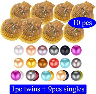 Dainashi 10 pcs Akoya Oysters Single Twins Saltwater Red Pearl Oysters Bulk Wholesale for Pearl Party Live (Round 7-8mm Pearls Inside) (10pcs red Oysters)