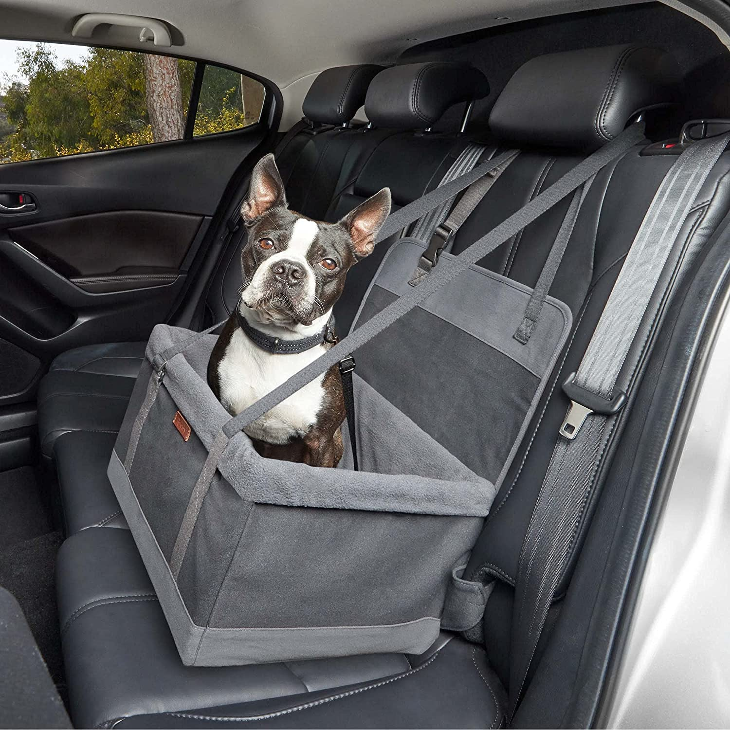 Petco In a popularity Brand - Reddy Max 77% OFF Booster Grey Seat Pet