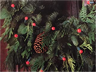 Smith and Hawken, Ltd 10ft Length Christmas Cranberry 20 Lights String with Battery Pack