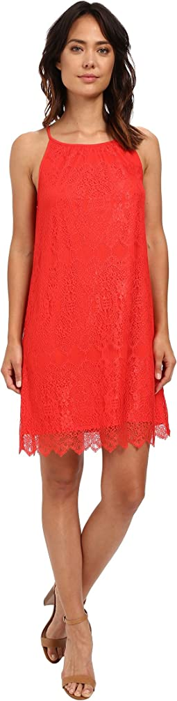 Dainty Lace Dress KS6K7668