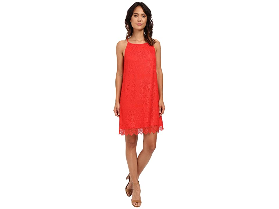 kensie Dainty Lace Dress KS6K7668 (Salsa) Women
