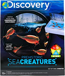 Discovery Kids Prehistoric Sea Creatures by Horizon Group USA, Great Stem Science Kit, Sea Creature Eggs, Sea Creature Food, Aquarium, Natural Sand & Poster Included