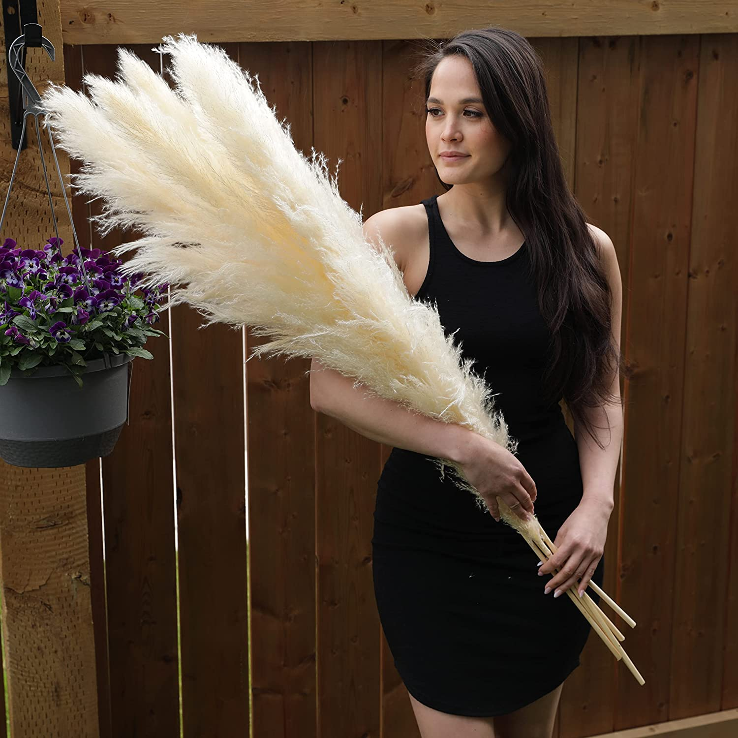 """Pampas Grass Decor Tall 48"""" - Cheap mail order shopping Dried Large Stems Max 71% OFF Natural 5"""