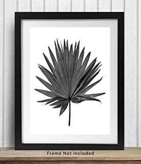 Tropical Palm Leaf Wall Art Print - 11x14 UNFRAMED, Minimalist Modern Black & White Decor - A Neutral, Contemporary Look for Any Room