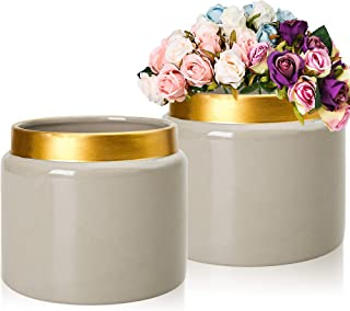 FRWUYU Indoor Ceramic Pot 6.7 inches, Nordic Style, Suitable for Modern Families, Gold Details and Gray Hand-Painted, Planting All Plants, with Drainage Holes, Greeting Cards (Set of 2)