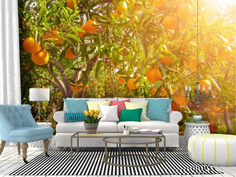 SKIWAMural Self Adhesive Wallpaper Roll ...