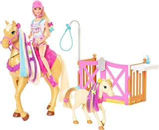 Barbie Groom 'n Care Horses Playset with Barbie Doll Blonde 11.5 in, 2 Horses & 20+ Grooming and Hairstyling Accessories,...