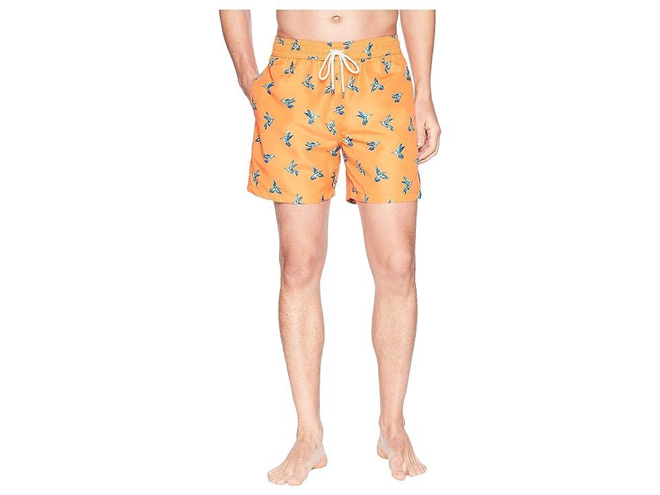Polo Ralph Lauren Polyester Traveler Shorts (Hummingbirds) Men