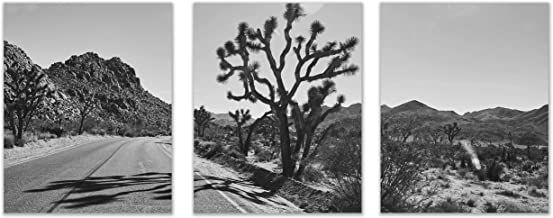 Best black and white desert photography Reviews