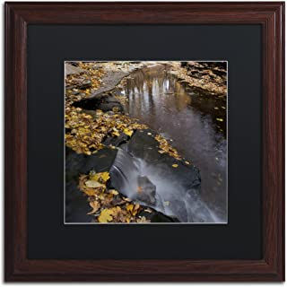 Lakeview Autumn Waterfall No.2 in Black Matte and Wood Frame Artwork by Kurt Shaffer, 16 by 16-Inch